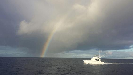 waikikisportfishing_rainbow